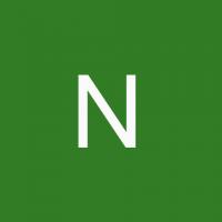 nainasingh